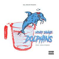 Money Savage - Dolphins @LegalTender_hge